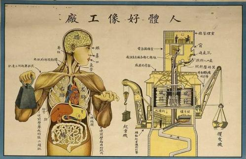 Detail of a Chinese health poster via no tech magazine  - the body as machine